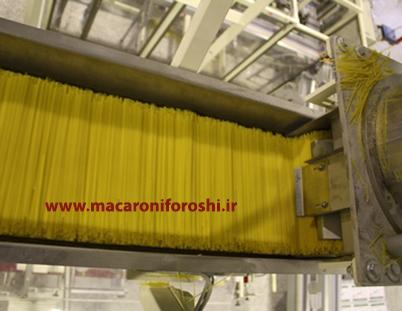 کارخانه تولید کننده ماکارونی رشته ای اسپاگتی