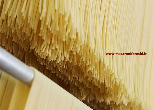 تولید کننده ماکارونی رشته ای اسپاگتی
